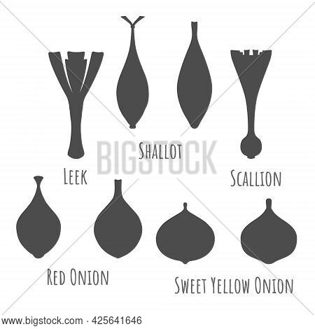 Icons Of Different Onions Isolated On White