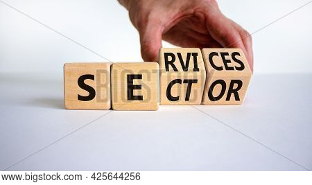 Services Sector Symbol. Businessman Turns Cubes With Words Services Sector. Beautiful White Backgrou