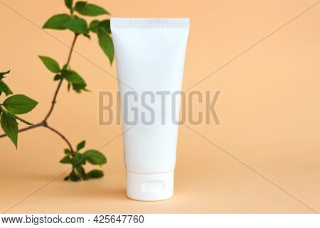 Bottles Of Cosmetic Cream With Green Leaves On Beige Background In Sunlight. Minimal Style Cosmetics