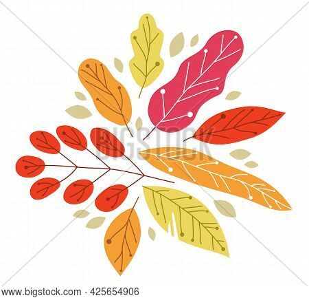 Yellow And Red Autumn Leaves Beauty Of Nature Vector Flat Illustration Isolated On White Background,