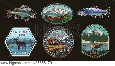Outdoor Recreation Vintage Colorful Prints With Moose Wild Duck Swimming In Lake Wooden Canoe Travel
