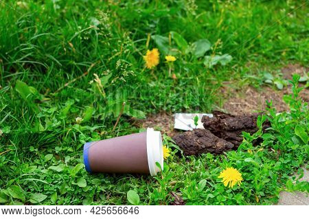 Soft Focus Of A Paper Coffee Cup Lying On The Green Grass On The Lawn. The Concept Of Environmental