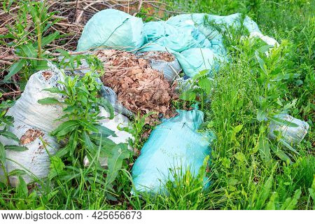 Soft Focus Of Abandoned And Overgrown Garbage Bags Dumped In The Forest. The Concept Of Environmenta