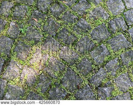 A Stone Walkway Or Cobblestone Paved Footpath In Feldli Cemetery Park In Saint Gallen (ein Steinwürf
