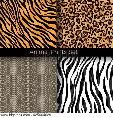 Vector Illustration Set Of Animal Skin Seamless Patterns. Tiger, Zebra, Snake And Leopard Skins Patt