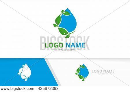 Premium Water Droplet And Leaves Logo Combination. Business Aqua Drop Logotype Design Template.
