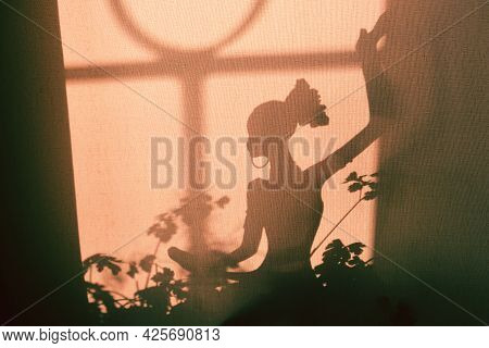 Shadow Silhouette Of Figurine Dancing Woman On Grunge Wall Background And Crossed Plants Lines Shado