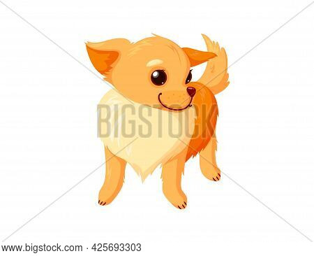 Standing Chihuahua Pet. Purebreed Dog Companion Isolated In White Background. Vector Illustration In