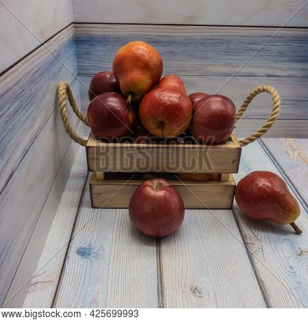 A Beige Wooden Box With Rope Handles Is Filled With Ripe Apples And Fruits. Two Red Fruits With Shin