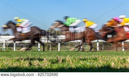 Horse Racing Action Horses Jockeys Running On Grass Turf Track Close Up Motion Speed Blur Photo Imag