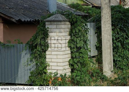 The Corner Of The Wall Of A House Made Of White Bricks And Gray Metal Overgrown With Green Vegetatio