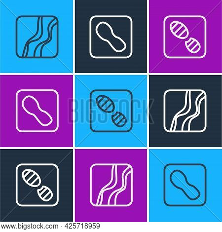 Set Line Snake Paw Footprint, Human Footprints Shoes And Icon. Vector