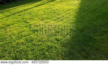 Freshly Cut Green Grass With Mower Stripes. Peaceful Garden With A Freshly Mown Lawn