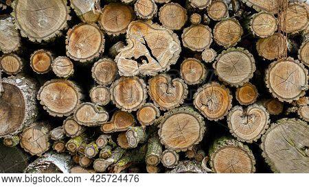 Dry Chopped Hemp. Wood Background. Hemp With Bark