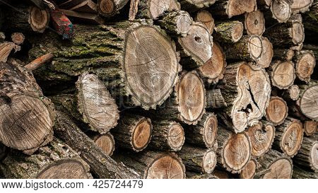 Dry Firewood  Firewood Prepared. Ready-made Logs For Kindling A Fire .. Hemp Of Different Breeds. Fi