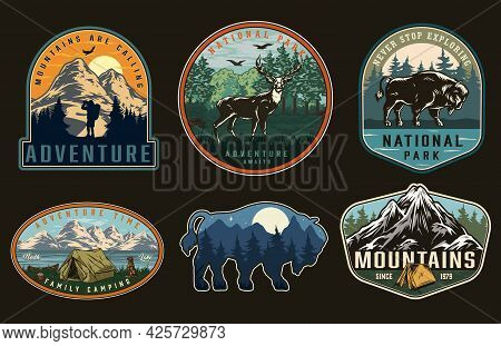 Summer Recreation Badges With Night Landscape Inside Bison Silhouette Deer Dog Sitting Near Tent And