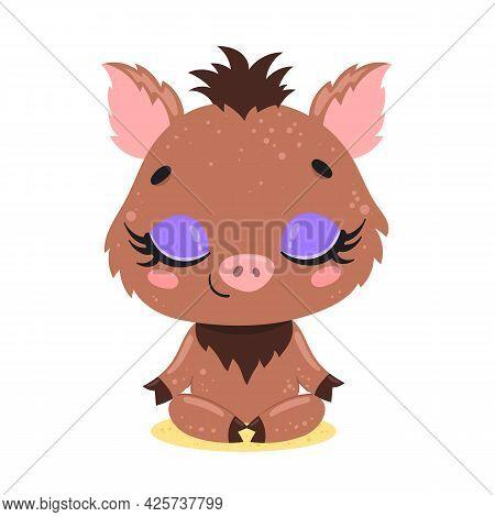 Vector Flat Cute Cartoon Doodle Boar Meditation. Forest Animals Meditate. Animals Yoga