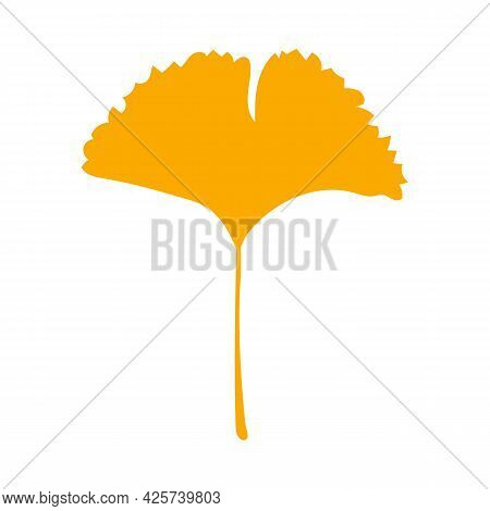 Autumn Leaf, Herbal Element. Fall Orange Ginkgo Leaf. Can Be Used As Sign, Symbol, Icon. Autumn Bota