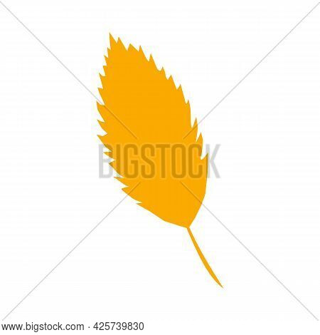 Autumn Leaf, Herbal Element. Fall Orange Hornbeam Leaf. Can Be Used As Sign, Symbol, Icon. Autumn Bo