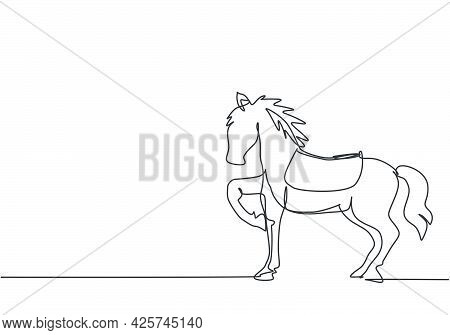 Continuous One Line Drawing A Circus Horse Stands On The Show Arena, Lifting One Of Its Legs While P