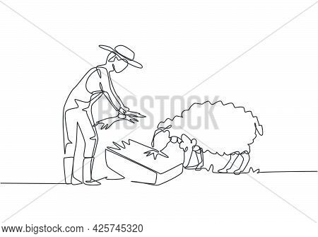 Single Continuous Line Drawing Young Male Farmer Is Feeding The Sheep So That The Sheep Will Be Heal