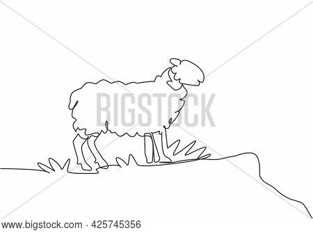 Single Continuous Line Drawing Of The Sheep Were Standing On The Edge Of The Meadow Looking For Food