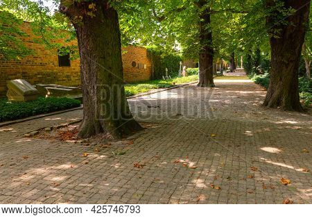 Poznan. Alley In The Old Park In Summer.