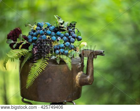 Wild Forest Berries Of Blueberries And Blueberries Are Collected In An Old Copper Kettle And Decorat
