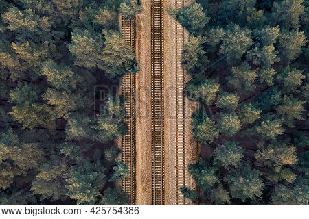 Rail Rails On Sleepers In The Middle Of A Green Forest In The Evening In Clear Weather. Background O