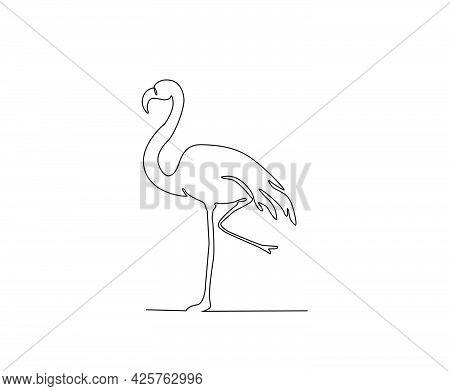 Pelican Continuous Line Art Drawing Style. Minimalist Black Pelecanus Bird Outline. Editable Active