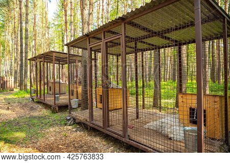 Kemerovo, Russia - 14.05.2021: Purebred Husky In An Open-air Cage At A Private Dog Farm Haskiland Ne