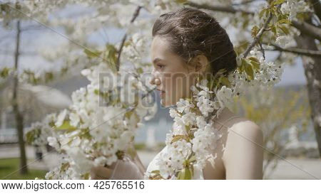 Beautiful Bride At Blooming Apple Tree. Action. Young Bride Poses By Flowering Tree At Wedding Photo