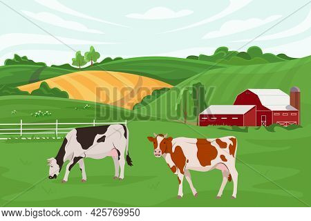 Vector Illustration Of A Cow Farm And Agriculture. Cattle Breeding. Summer Rural Landscape With A Fa