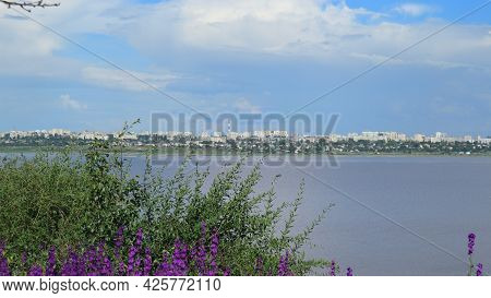 In The Foreground Is A Beautiful Large Green Bush With Violet-colored Flowers, Behind Which Is An Es