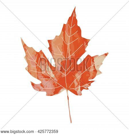 Bright Orange Red And Brown Watercolor Aquarelle Artistic Maple Leaf Vector Illustration Isolated On