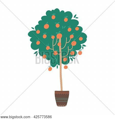 Potted Orange Tree With Fruits. Vector Hand Drawn Illustration In A Flat Style Isolated On White Bac