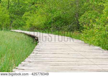 View Of Wooden Deck Among Tall Green Grass With Rock Behind And Bushes In Plitvice Lakes National Pa