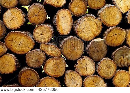 Background From Round Logs Piled In A Heap At A Sawmill. Procurement Of Natural Fuel For Heating. Fr