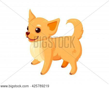 Standing Chihuahua Pet. Happy Dog Companion Isolated In White Background. Vector Illustration In Cut