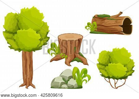 Forest Nature Elements Landscape Set With Tree, Stump, Old Trunk, Bush, Stone Pile And Moss In Carto