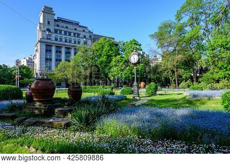 Landscape With Green Trees, Leaves, Vintage Clock And Many Small Blue Forget Me Not Or Scorpion Gras