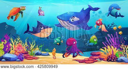 Marine Life, Underwater World With Sea Ocean Animals, Corals And Algae, Cartoon Dolphin And Shark, W