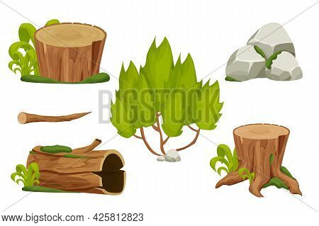 Forest Nature Elements Landscape Set With Tree Stump, Sold Trunk, Bush, Stone Pile And Moss In Carto