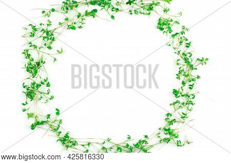 Watercress Microgreens On White Background, Isolate. Microgreen Circle With Place For Text. Vegan An