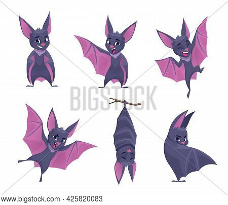 Bat. Night Wild Flying Scary Animals Mouse Vampire Funny Cute Mammals With Wings Exact Vector Illust