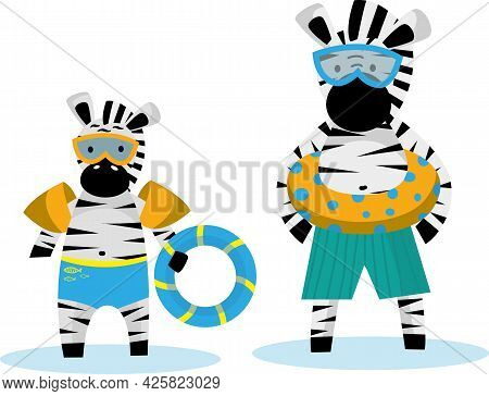 Zebra Papa And Zebras Little Go Swimming With Swimming Ring And Swimming Goggles. Cute Animal Charac