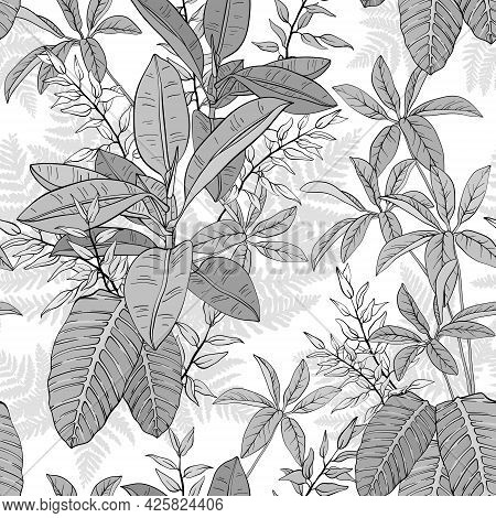 Ficus, Palm Leaves And Tropical Plants Seamless Pattern, Tropical Foliage, Branch, Greenery. Monochr