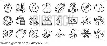 Set Of Nature Icons, Such As Sun Energy, Fair Trade, Refill Water Icons. Almond Nut, Startup, Weathe
