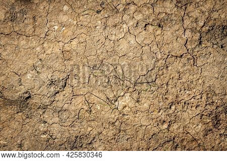 Abstract Ground Texture With Clumps. Soil Background.