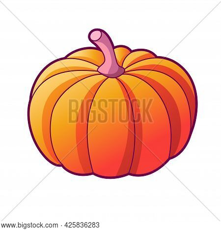Drawn Pumpkin. Vector Illustration, Icon Isolated On White Backgorund. Organic Vegetarian Food For H